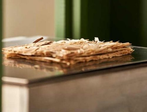 Das neue Holztechnikum von Bussetti